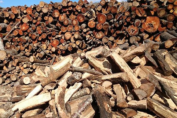 produzione-e-vendita-legname